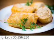 Купить «Stuffed cabbage leaves with minced meat and rice in tomato sauce.», фото № 30356250, снято 18 марта 2019 г. (c) Peredniankina / Фотобанк Лори