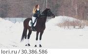 Купить «A woman on a horseback standing in a snowy field», видеоролик № 30386586, снято 23 июля 2019 г. (c) Константин Шишкин / Фотобанк Лори