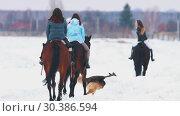 Купить «Three women riding horses in a village during the winter with a dog running near by them», видеоролик № 30386594, снято 23 июля 2019 г. (c) Константин Шишкин / Фотобанк Лори