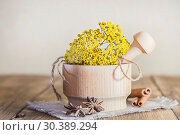 Phytotherapy, collecting medicinal herbs for tea and mixtures. Dried tansy flowers in a wooden mortar with pestle on a rustic background. Стоковое фото, фотограф Светлана Евграфова / Фотобанк Лори