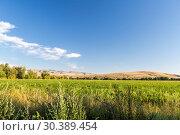 Купить «Красивый пейзаж в степях Казахстана», фото № 30389454, снято 23 августа 2016 г. (c) Ольга Сейфутдинова / Фотобанк Лори