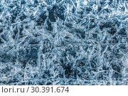 Купить «Patterns on the ice of lake Baikal. Irkutsk region, Eastern Siberia, Russia», фото № 30391674, снято 18 марта 2019 г. (c) Наталья Волкова / Фотобанк Лори