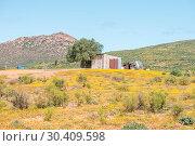 Купить «Nama farm near Spoegrivier», фото № 30409598, снято 15 августа 2015 г. (c) easy Fotostock / Фотобанк Лори