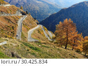 Панорамная высокогорная дорога Тиммельсйох. Эцтальские Альпы, Южный Тироль, Италия. (2018 год). Стоковое фото, фотограф Bala-Kate / Фотобанк Лори