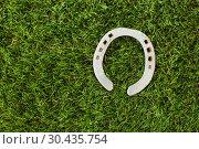 Купить «horseshoe on artificial grass», фото № 30435754, снято 15 марта 2018 г. (c) Syda Productions / Фотобанк Лори