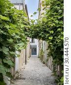 Купить «Impasse Poule, rue des Vignoles, Paris 75020.», фото № 30444570, снято 19 сентября 2018 г. (c) age Fotostock / Фотобанк Лори