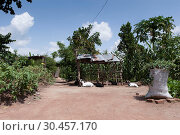 Купить «Smallholder yard in Uganda», фото № 30457170, снято 20 апреля 2019 г. (c) age Fotostock / Фотобанк Лори