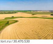 Купить «Top view on a field with beveled cereals», фото № 30470530, снято 30 июля 2018 г. (c) Володина Ольга / Фотобанк Лори