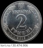 Купить «Монета Украины 2 гривны 2018 года», фото № 30474906, снято 30 марта 2019 г. (c) Владимир Макеев / Фотобанк Лори