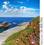 Atlantic blossoming coastline (Spain). Стоковое фото, фотограф Юрий Брыкайло / Фотобанк Лори