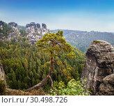 Купить «Views of the national park Saxon Switzerland of Bastei. Germany», фото № 30498726, снято 8 сентября 2014 г. (c) Наталья Волкова / Фотобанк Лори