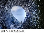 Купить «Black Ice Cave, Vatnajokull, Sudurland, Iceland, Europe.», фото № 30525598, снято 21 марта 2019 г. (c) age Fotostock / Фотобанк Лори