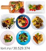 Купить «Collection of meals of fowl», фото № 30529374, снято 17 сентября 2019 г. (c) Яков Филимонов / Фотобанк Лори