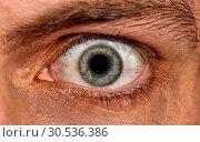 Купить «Shot of scared man eye», фото № 30536386, снято 14 февраля 2011 г. (c) Tryapitsyn Sergiy / Фотобанк Лори