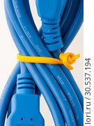 Купить «USB cable», фото № 30537194, снято 20 мая 2011 г. (c) Tryapitsyn Sergiy / Фотобанк Лори