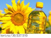 Купить «Bottle of sunflowers oil», фото № 30537510, снято 14 июля 2011 г. (c) Tryapitsyn Sergiy / Фотобанк Лори