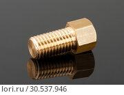 Big brass bolt. Стоковое фото, фотограф Tryapitsyn Sergiy / Фотобанк Лори