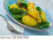 Купить «Delicious cooked fried new potatoes with spinach served at plate», фото № 30538594, снято 14 ноября 2019 г. (c) Яков Филимонов / Фотобанк Лори