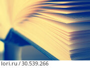 Book. Стоковое фото, фотограф Tryapitsyn Sergiy / Фотобанк Лори
