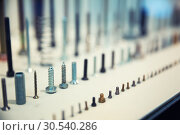 Купить «Assorted industrial screws», фото № 30540286, снято 7 июля 2013 г. (c) Tryapitsyn Sergiy / Фотобанк Лори