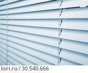 Купить «Window blinds», фото № 30540666, снято 25 октября 2013 г. (c) Tryapitsyn Sergiy / Фотобанк Лори