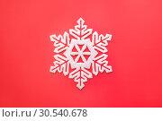 Купить «Snowflakes», фото № 30540678, снято 28 октября 2013 г. (c) Tryapitsyn Sergiy / Фотобанк Лори