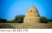 Купить «The Islamic cemetery with qubba at Dongola, Kerma, Nubia, Sudan», фото № 30541710, снято 3 марта 2011 г. (c) Сергей Майоров / Фотобанк Лори