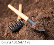 Купить «Garden tools on soil», фото № 30547178, снято 18 ноября 2013 г. (c) Tryapitsyn Sergiy / Фотобанк Лори