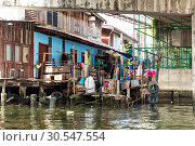 Купить «Shanty-town. on canal in Thailand», фото № 30547554, снято 24 декабря 2013 г. (c) Tryapitsyn Sergiy / Фотобанк Лори