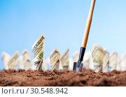 Купить «American dollars grow from the ground», фото № 30548942, снято 23 июля 2014 г. (c) Tryapitsyn Sergiy / Фотобанк Лори
