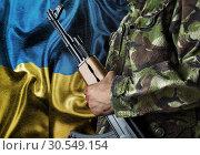 Ukraine waving flag with soldier (2012 год). Стоковое фото, фотограф Tryapitsyn Sergiy / Фотобанк Лори