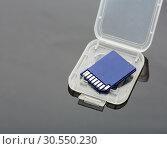 Купить «Sd card», фото № 30550230, снято 19 ноября 2014 г. (c) Tryapitsyn Sergiy / Фотобанк Лори