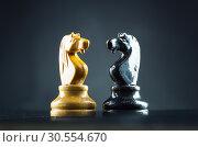 Chess knights. Стоковое фото, фотограф Tryapitsyn Sergiy / Фотобанк Лори