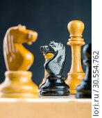Chess figures. Стоковое фото, фотограф Tryapitsyn Sergiy / Фотобанк Лори