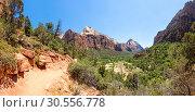 Купить «Virgin nature paniramic view of Zion National Park», фото № 30556778, снято 23 июня 2016 г. (c) Tryapitsyn Sergiy / Фотобанк Лори