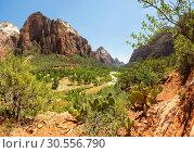 Купить «Amazing view of canyon at Zion National Park», фото № 30556790, снято 23 июня 2016 г. (c) Tryapitsyn Sergiy / Фотобанк Лори