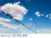 Купить «Barbed wire againdt blue cloudy sky.», фото № 30556890, снято 25 июня 2016 г. (c) Tryapitsyn Sergiy / Фотобанк Лори