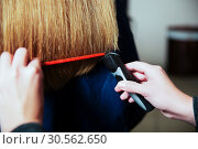 Купить «Hairdresser with machine for hair and hairbrush.», фото № 30562650, снято 28 сентября 2016 г. (c) Tryapitsyn Sergiy / Фотобанк Лори