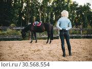 Купить «Female rider trains her horse, horseback riding», фото № 30568554, снято 17 сентября 2017 г. (c) Tryapitsyn Sergiy / Фотобанк Лори