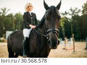 Equestrian sport, woman poses on horseback. Стоковое фото, фотограф Tryapitsyn Sergiy / Фотобанк Лори