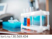 Купить «Laboratory tests in glass flasks closeup», фото № 30569434, снято 4 декабря 2017 г. (c) Tryapitsyn Sergiy / Фотобанк Лори