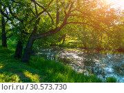 Купить «Summer forest landscape - green deciduous oak tree on the bank of the small forest river in summer sunny morning», фото № 30573730, снято 14 июня 2012 г. (c) Зезелина Марина / Фотобанк Лори