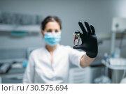 Купить «Dentist shows tooth pin and model, dental clinic», фото № 30575694, снято 1 декабря 2018 г. (c) Tryapitsyn Sergiy / Фотобанк Лори