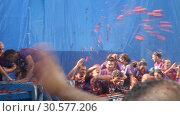 Купить «Battle of tomatoes. La Tomatina festival where people are fighting with tomatoes at street», видеоролик № 30577206, снято 29 августа 2018 г. (c) Яков Филимонов / Фотобанк Лори