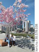 Купить «Сакура на Тургеневской площади в Москве», эксклюзивное фото № 30578038, снято 2 июня 2018 г. (c) Дмитрий Неумоин / Фотобанк Лори