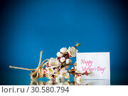 Купить «Branch with apricot flowers on a blue background», фото № 30580794, снято 15 апреля 2019 г. (c) Peredniankina / Фотобанк Лори