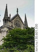 Купить «Notre Dame.», фото № 30601930, снято 12 июня 2018 г. (c) Сергей Дрозд / Фотобанк Лори