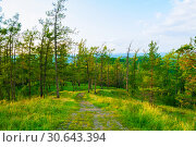 Купить «Forest landscape with trees, mountain slopes and path under soft sunset light», фото № 30643394, снято 23 августа 2013 г. (c) Зезелина Марина / Фотобанк Лори