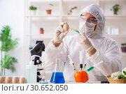 Купить «Scientist working in lab on GMO fruits and vegetables», фото № 30652050, снято 5 декабря 2018 г. (c) Elnur / Фотобанк Лори