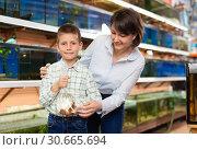Купить «Boy and mother with fish in plastic bag», фото № 30665694, снято 27 февраля 2019 г. (c) Яков Филимонов / Фотобанк Лори
